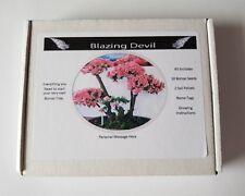 Bonsai Tree Kit Personalised Azelea grow your own tree gift set, starter kit UK