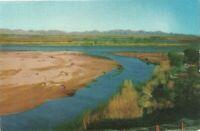 c1900s CO River At Yuma AZ borderline between Arizona and California Postcard