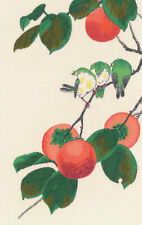 Counted Cross Stitch Kit OVEN 1265 - Thewhite-eyes and persimmon