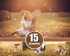 15 Dragonfly butterfly Photo Photography Overlays, magic overlays, png file