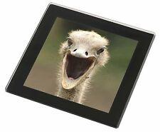 Ostritch Photo Print Black Rim Glass Coaster Animal Breed Gift Ab-os1gc