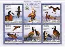 Timbres Oiseaux Canards Comores 1706/10 ** année 2009 lot 28013 - cote : 12,50 €