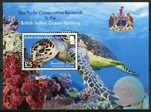 BIOT Turtles Stamps 2016 MNH Sea Turtle Research Conservation Hawksbill 1v M/S