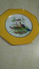 "Wedgwood Plate, Vintage Birds, Yellow Border, Octagon 8"""