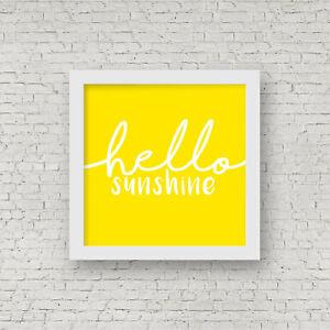 Super Furry Animals - Hello Sunshine Framed artwork - Gruff Rhys - SFA - Indie