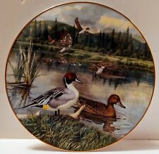 Vintage Knowles Plate The Pintail First Issue Living W/ Nature Jerner's Ducks.