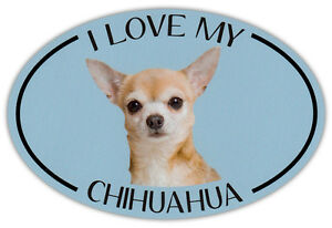 Oval Dog Breed Picture Car Magnet - I Love My Chihuahua - Bumper Sticker Decal