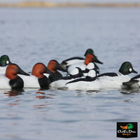 AVERY GHG OVER SIZE OS DIVER PACK CANVASBACK GOLDENEYE BUFFLEHEAD DUCK DECOYS
