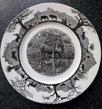 WEDGWOOD - WARTHOG - KRUGER NATIONAL PARK SAFARI ANIMAL 27cm PLATE PLAQUE