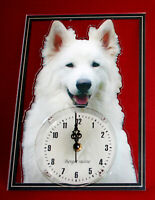 Horloge pendule chien berger blanc suisse 4 clock dog uhr hund reloj perro