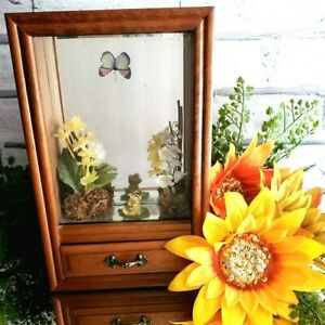 Vintage Butterfly Frog Spring Music Jewelry Box SUNSHINE of my LIFE *SEE VIDEO*