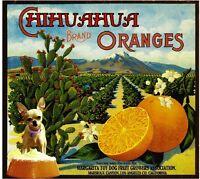 Rialto San Bernardino Wilshire Hollyberry Orange Citrus Fruit Crate Label Print