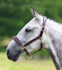 Shires Blenheim Leather Padded Travel Headcollar -Pony, Cob, Full or Extra Full.