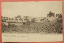 1905 PC NEW TROLLEY BRIDGE HERKIMER NEW YORK NY POST CARD