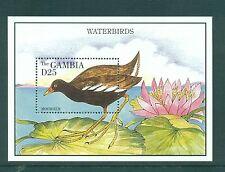 Gambia 1995 Moorhen Water Birds Minisheet MNH SG 1984b