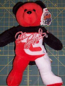 """Dale Earnhardt #3 The Intimidator Team Bear 8"""" Tall NASCAR ©1995"""