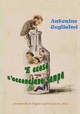 'e Ccose S'Acconciano Sempe by Antonino Guglielmi (2012, Paperback)