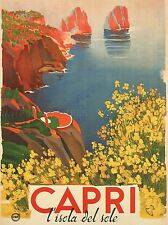 TRAVEL TOURISM CAPRI SUN ISLAND FLOWERS SEA ITALY POSTER ART PRINT BB2842A