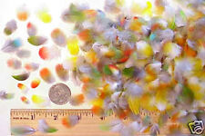 50 ALL COLORS PARROT Bird FEATHERS Yellow Red Green Hair Extension Jewelry Charm