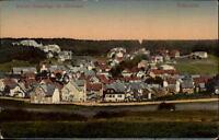 Braunlage im Oberharz Postkarte ca. 1925 gelaufen Teilansicht Felder und Wald