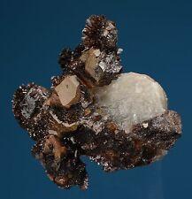 Quartz var. Onegite w/ Goethite (repaired) Eagle Ridge Claim Colorado 501039