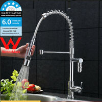WELS Swivel Spout Chrome Pull Out Spray Kitchen Sink Mixer Deck Mounted Taps