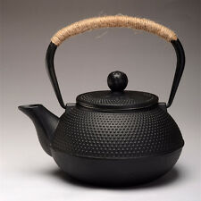 Japanese Style Cast Iron Kettle Tetsubin Teapot Comes With Strainer