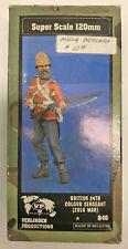 Verlinden 120mm British 24th Colour Sergeant (Zulu War) Kit 1/16 #846