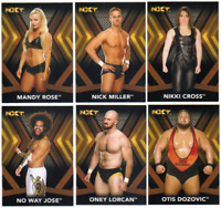 2017 Topps WWE NXT Wrestling - Bronze Parallel Cards - Choose From Card #'s 1-50