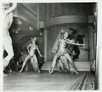 FRANCE Paris Bal Tabarin Danse Cabaret ca 1930, Photo Stereo Cellulose VR2L14n5