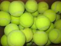 LOT O 50 Dead Tennis Balls Dogs Fetch Bottom of Walkers Chairs Play Catch Toys