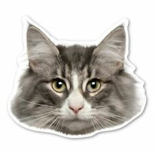 Norwegian Forest Cat Magnet