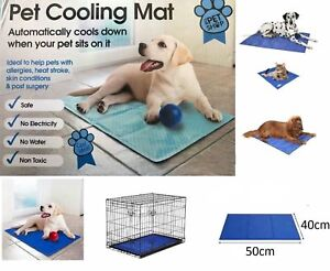 Pet Self Cooling Gel Mat Cool Mat For Dogs Cats Pad Bed Mattress Heat Relief New