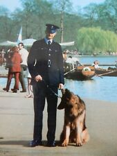 More details for postcard  police dog handler london alsatian german shepherd/ store p8 loose