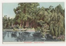 Uruguay, Montevideo, Bosque del Prado Postcard, B271