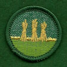 VINTAGE  GIRL SCOUT BADGE -  BRIGHT MEDIUM GREEN - OUTDOOR SAFETY