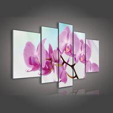 Immagine Tela Poster Parete Immagine Parete immagini canvas Fiori Orchidee 3fx124s4a