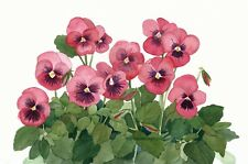 Pink Pansies Group Watercolor Reproduction by Wanda Zuchowski-Schick