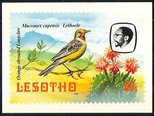 Lesotho 1982 Birds/Longclaw/Cactus/Nature Postcard a86