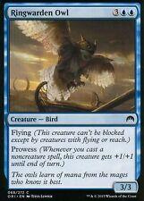 4x Ringwarden Owl | NM/M | Magic Origins | MTG