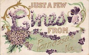 H48/ Parnassus Virginia Postcard 1910 Greetings Few Lines From Parnassus Va