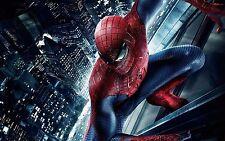 Amazing Spiderman 2 Movie  24 x 36 Poster