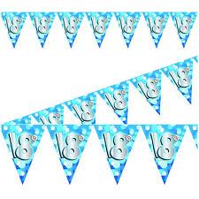 Azul 4M / 13ft resistente a la intemperie Guirnalda Pancarta - 18th Cumpleaños