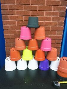 """40 Plant Pots 15- 16cm Strong Plastic Used Round Flower Pot 6"""" Quality 1.5Liter"""