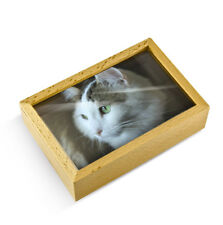 Light Wood Tone 18 Note Musical Photo Frame Keepsake - Over 400 Song Choices