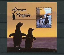 Liberia 2015 MNH African Penguin 1v S/S Penguins Birds Spheniscus Demersus