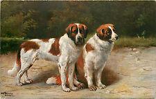 Schonian A/S St. Bernard Dogs #1001 P/C