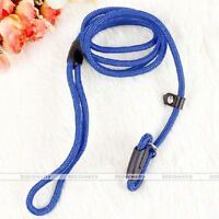 Nylon Pet Dog Lead Walking Slip Collar Rope Strap Strong Training Leash Blue