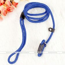 Nylon Pet Dog Lead Walking Slip Collar Rope Strap Strong Training Leash Blue