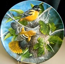 The Baltimore Oriole, Kevin Daniel, Birds Of Your Garden Collection, Knowles